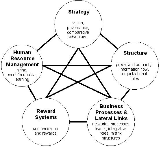 Galbright_star_model_design_organisationnel